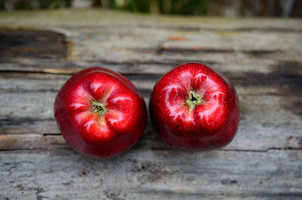 apple-red-red-apple-fruit
